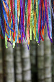 Colorful Brazilian Carnival Wish Ribbons Bamboo Forest Jungle Stock Images