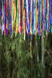 Colorful Brazilian Carnival Wish Ribbons Bamboo Forest Jungle Stock Photos