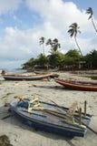 Colorful Brazilian Jangada Fishing Boats Jericoacoara Stock Photography