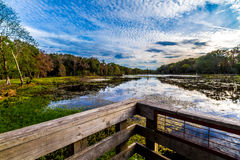 Colorful Brazos Bend Lake. Royalty Free Stock Photos