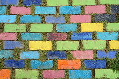Colorful brick with grass Stock Photo