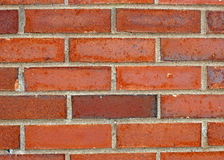 Colorful Brick Wall. Brick Wall in Several Shades of Red Royalty Free Stock Image