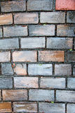 Colorful brick wall Stock Photography