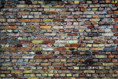 Colorful brick wall Royalty Free Stock Photography