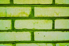 Colorful brick wall pattern, painted bricks as urban texture. Light green bricks as part of wall or fence with emerald green lines between bricks with some Stock Images