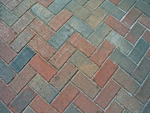 Colorful bricks. Bricks on a walkway Stock Images