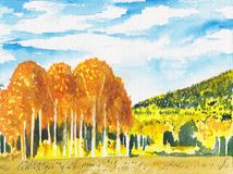 Colorful bright autumn landscape. Fall background. Watercolor hand painted illustration. Trees sketch, golden forest scene card stock illustration
