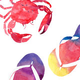 Colorful bright beautiful lovely summer sea tasty delicious pattern of red crab and beach colorful flip flops watercolor Royalty Free Stock Photography