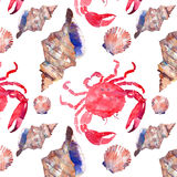 Colorful bright beautiful lovely summer sea tasty delicious pattern of red crabs and tender pastel seashells watercolor hand illus Stock Image