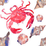 Colorful bright beautiful lovely summer sea tasty delicious pattern of red crabs and tender pastel seashells watercolor hand illus Royalty Free Stock Photography