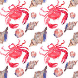 Colorful bright beautiful lovely summer sea tasty delicious pattern of red crabs and tender pastel seashells watercolor hand illus Stock Images