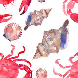 Colorful bright beautiful lovely summer sea tasty delicious pattern of red crabs and tender pastel seashells watercolor hand illus Stock Photography