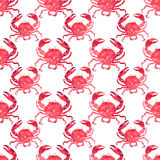Colorful bright beautiful lovely summer sea tasty delicious pattern of red crabs watercolor hand illustration Royalty Free Stock Photography