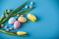 Colorful Easter eggs with yellow Tulip hand painted on a blue background. Holiday spring card. Colorful bright Easter eggs with yellow Tulip hand painted on a royalty free stock image
