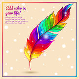 Colorful bright feather with lights rainbow Stock Photo