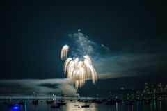 Colorful bright firework at night at summer time. royalty free stock image