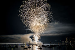 Colorful bright firework at night at summer time. stock image