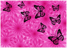 Colorful bright flowers and butterflies silhouettes Royalty Free Stock Photo