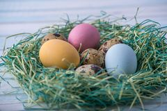 Colorful bright hand painted Easter eggs in a nest. Holiday spring card. Colorful bright hand painted Easter eggs in a nest on a blue background. Holiday spring Stock Photos