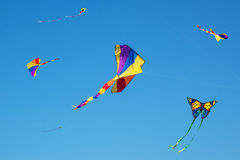 Colorful, bright kites in the sky Royalty Free Stock Photos