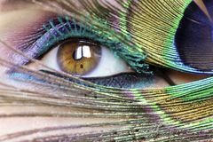 Colorful bright makeup on brown eye close-up. Color turquoise mascara.Peacock eye royalty free stock image