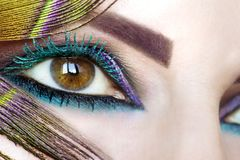 Colorful bright makeup on brown eye close-up. Color turquoise mascara.Peacock eye stock photos