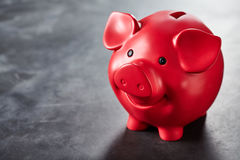 Colorful bright red piggy bank on slate Stock Images