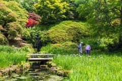 Colorful British castle garden in Sussex, England. Colorful British castle garden during spring in Sussex, England Royalty Free Stock Photos