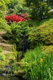 Colorful British castle garden in Sussex, England. Colorful British castle garden during spring in Sussex, England Stock Images
