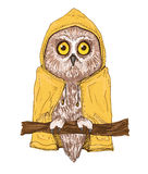 Colorful brown owl in bright yellow raincoat. Isolated owl illustration. Colorful bird of brown color in bright yellow raincoat. Small boreal owl sitting on Royalty Free Stock Images