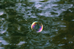 Colorful Bubble Stock Photography
