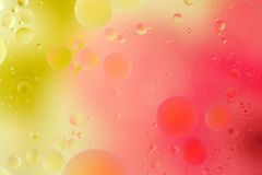 Colorful bubbles. Macro shot of colorful oil bubbles on water Stock Photos