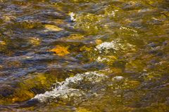 Colorful bubbling stream with bright rocks royalty free stock images