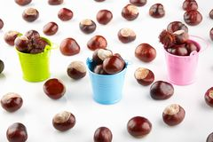 Colorful buckets with chestnuts and peeled horse-chestnuts. On white background stock photos