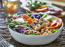 Colorful buddha bowl with grilled tofu and pea shoots Royalty Free Stock Images