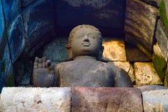 Colorful Buddha Stock Images