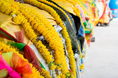 Colorful Buddhism garland on tree. Royalty Free Stock Images
