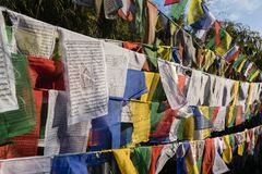 Colorful buddhism prayer flags on the Observatory hill in Darjeeling. India Royalty Free Stock Photo
