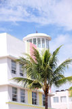 Colorful building with palm tree. Colorful Art Deco high-rise building, with palm tree and bright blue sky.  Taken in Miami South Beach, Florida Royalty Free Stock Photography