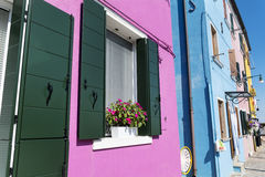 Colorful buildings with petunia flowers in Burano island (Venice, Italy) Stock Photography