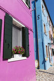 Colorful buildings with petunia flowers in Burano island (Venice, Italy) Royalty Free Stock Image