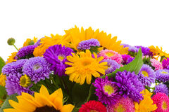 Colorful bunch of autumn flowers border Royalty Free Stock Image