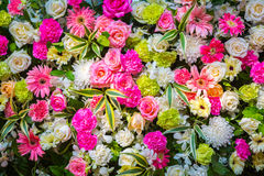 Colorful Bunch of flowers Stock Photos