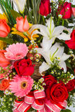 Colorful Bunch of flowers Stock Images