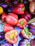 A Colorful Variety Of Fresh Bell Peppers stock photography