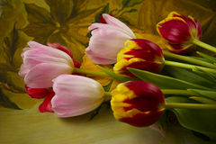 Colorful bunch of tulips. Bunch of several red, yellow, pink tulips on colourful painting background. Selective focus Stock Images