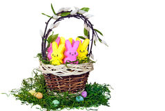 Colorful bunnies in basket Royalty Free Stock Photo