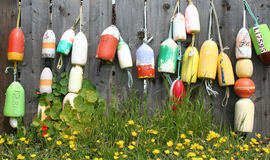Colorful buoys on a fence. Stock Image