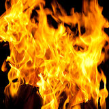 Colorful burning fire Stock Image