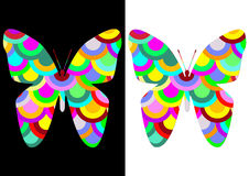 Colorful butterflies Stock Photography